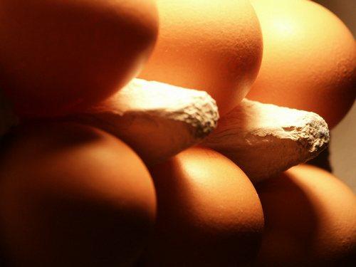 Ceny kurcząt całych i jaj konsumpcyjnych w UE i Polsce (25.07.2016)