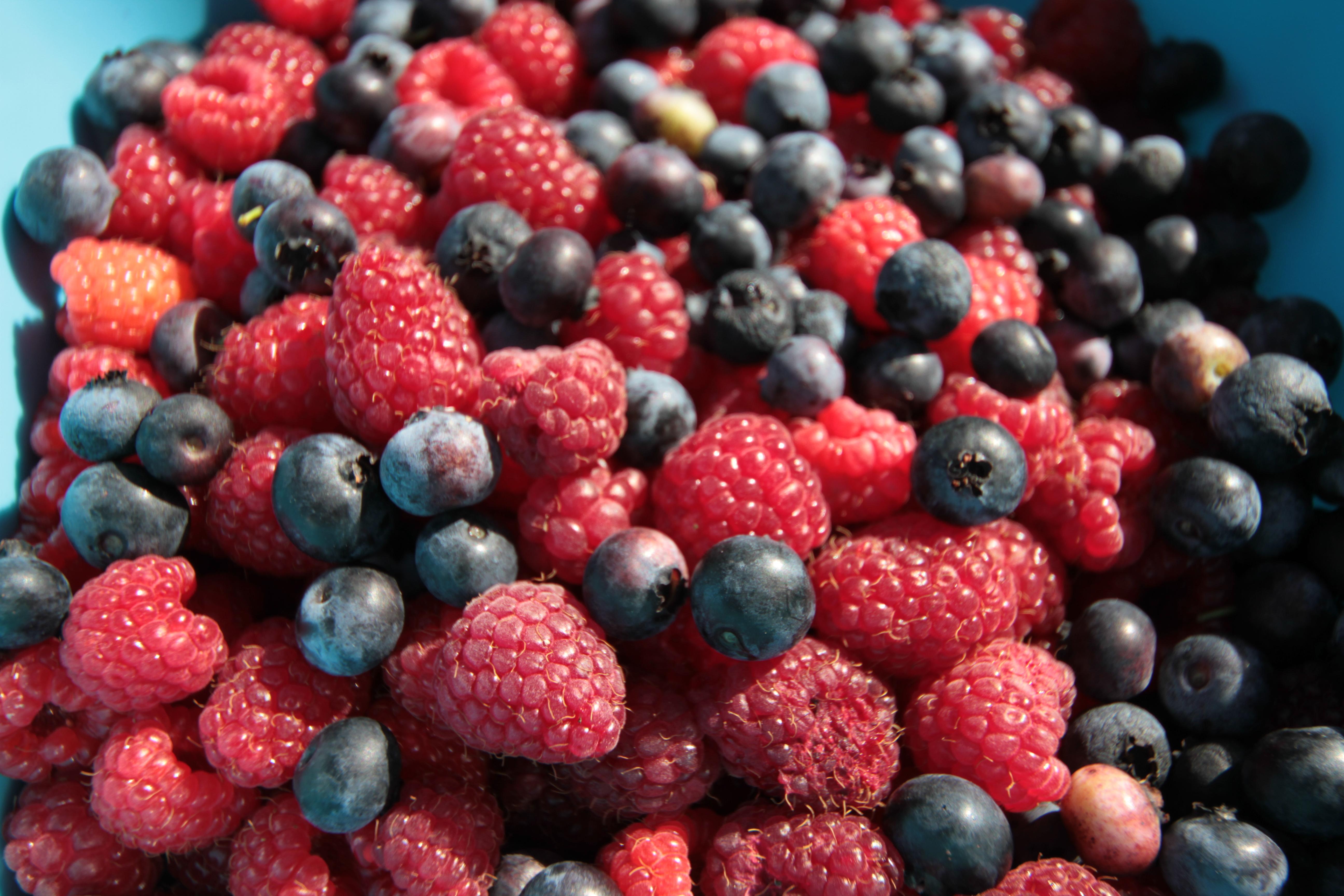 Sytuacja na rynku owoców w Polsce