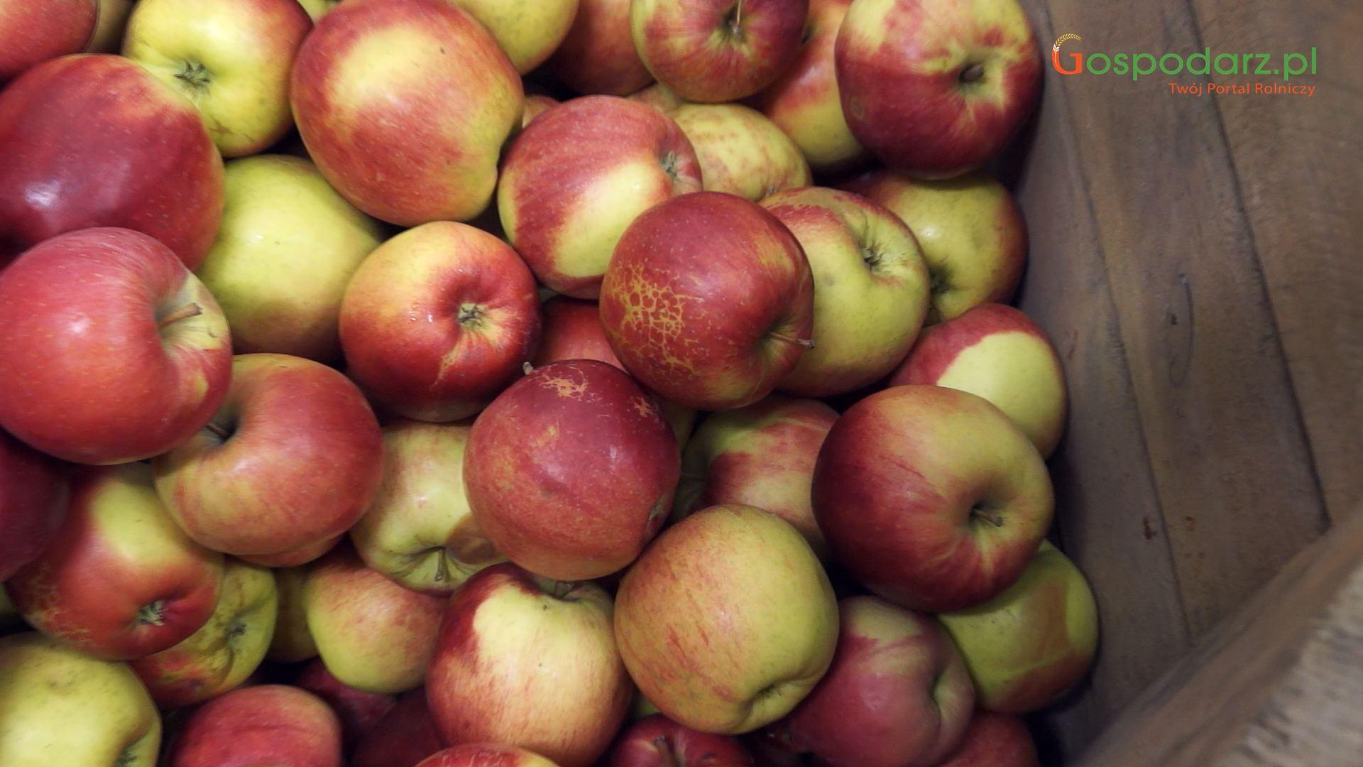Ceny detaliczne owoców w UE zdecydowanie wyższe niż przed rokiem