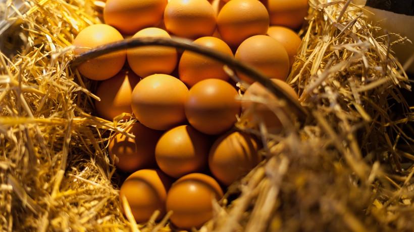 Handel jajami i ich spożycie