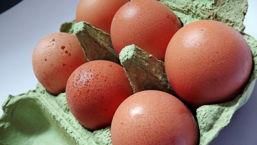 Rekordowy eksport jaj w 2017 r.