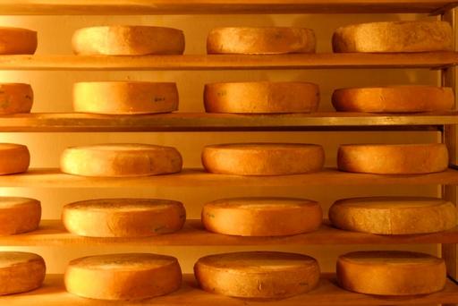 Rynek produktów mleczarskich w Polsce (24.05.2020)