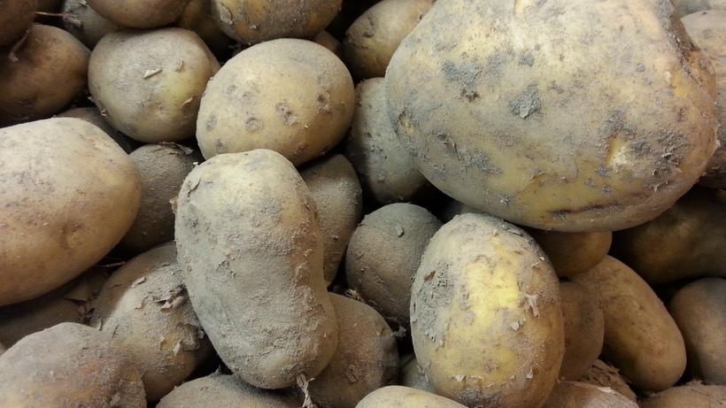 Korekta cen ziemniaków