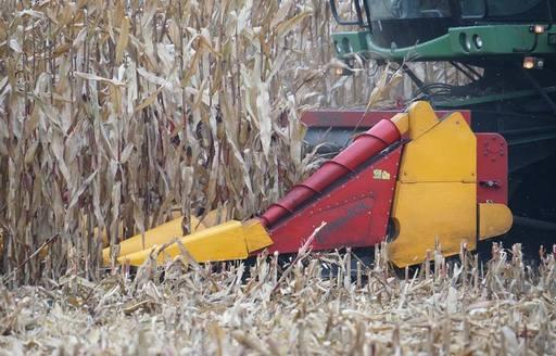 Podsumowanie tygodnia na giełdowym rynku zbóż (24-28.10.2016)