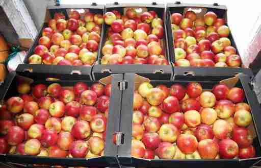 Ceny owoców w Polsce (04.10.2016)